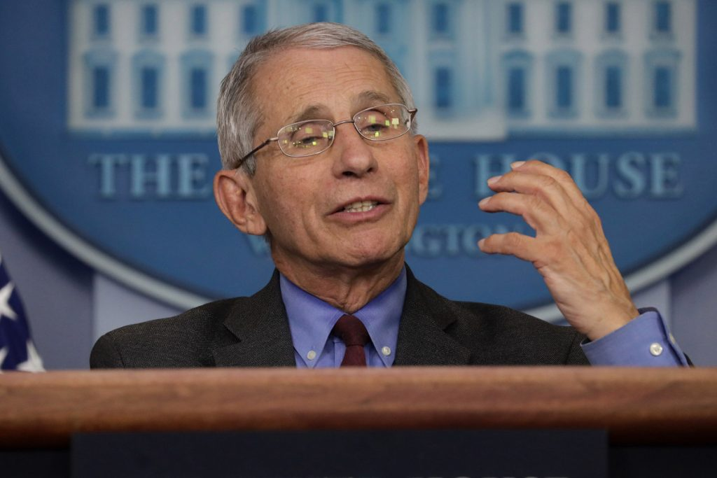 Fauci says 'real normality' in the US unlikely until next year