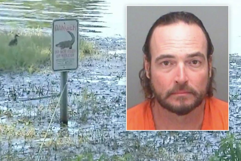Florida man bitten in face by alligator playing disc golf