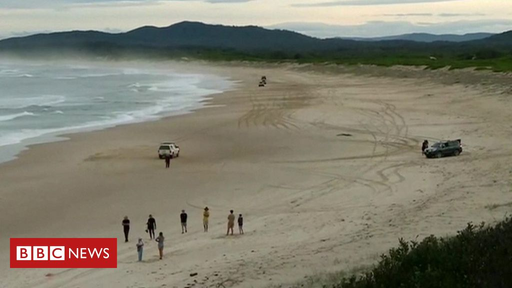 Shark kills teenage surfer in Australia's New South Wales