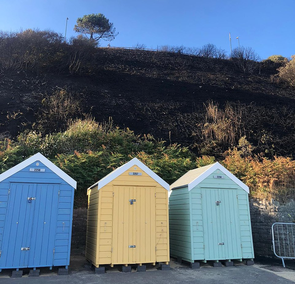 The inferno decimated swathes of gorse on the cliff face rising above Bournemouth's iconic promenade