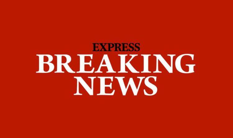 London stabbing: Man killed after person seen being bundled into vehicle   UK   News