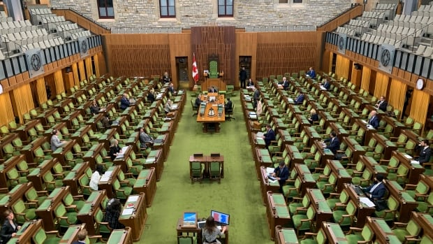 MPs reviewing virtual voting options to bolster COVID-19 Parliament