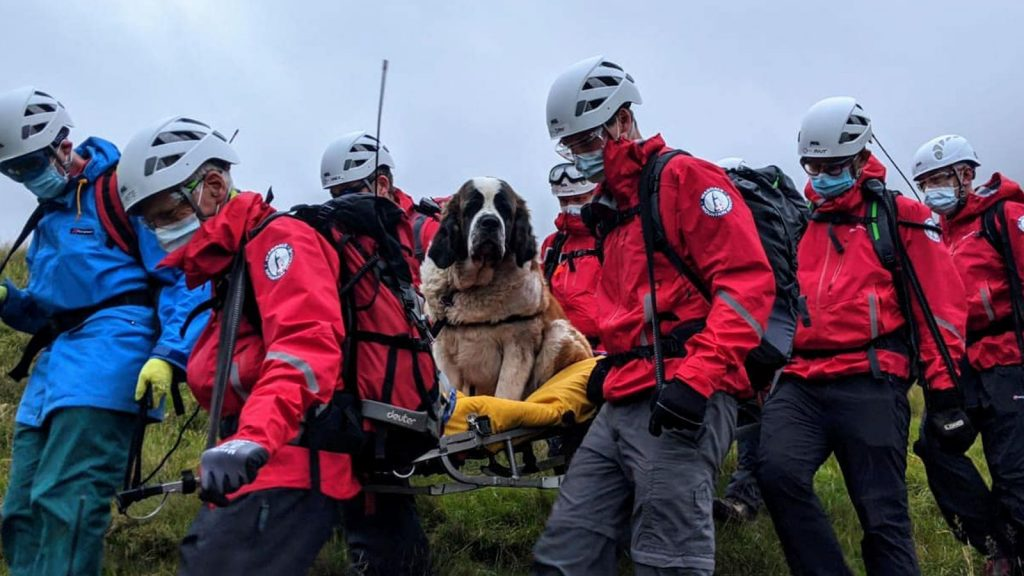 Daisy collapsed on the way down Scafell Pike. Pic: Wasdale Mountain Rescue Team