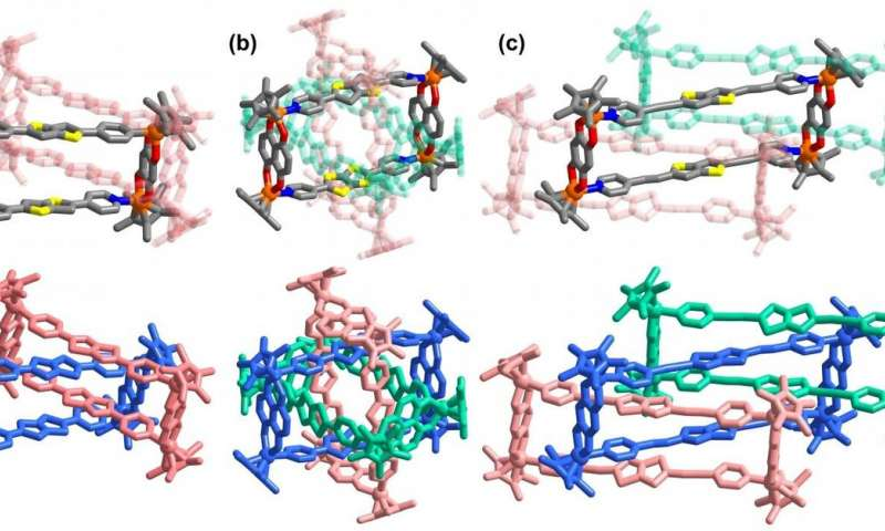 &quotAll-in-one&quot strategy for metalla[3]catenanes, borromean rings and ring-in-ring complex