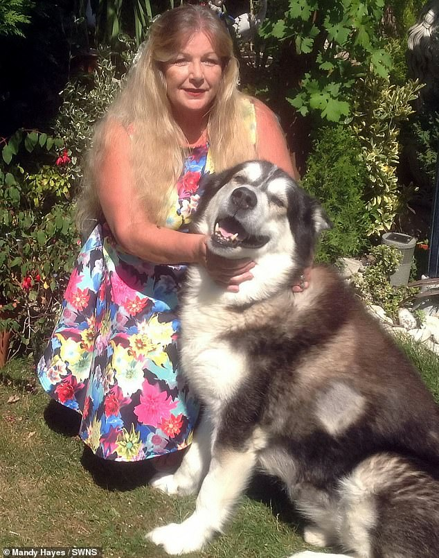 Mandy Hayes. from Gravesend in Kent, with her pet dog Mushka who she believes suffered from coronavirus after chewing on her used tissues while she was battling the infection