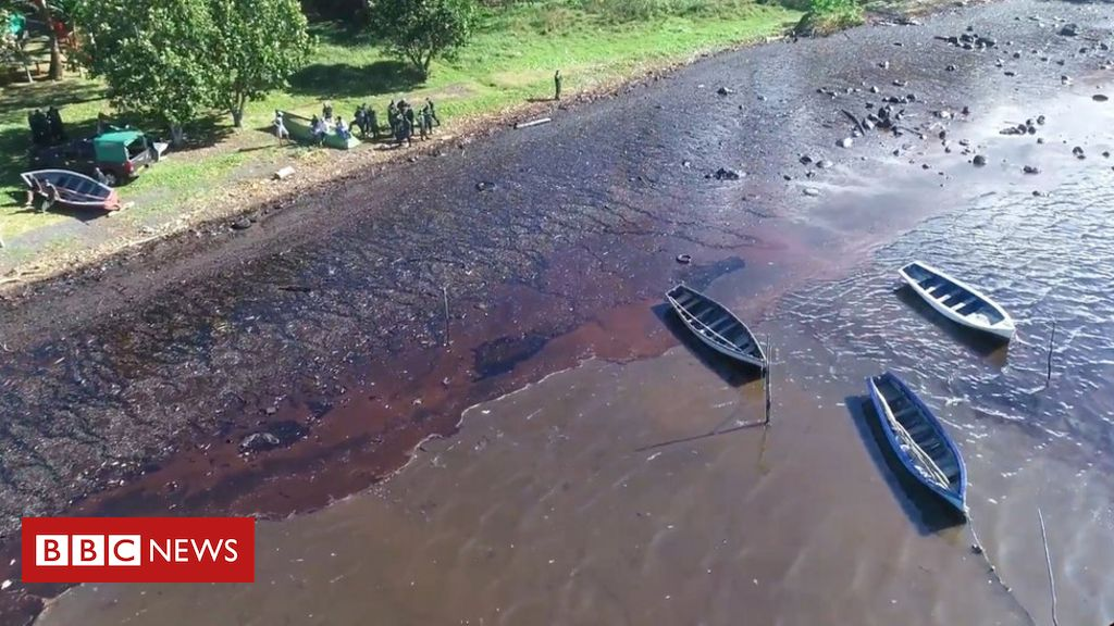 MV Wakashio: Locals in Mauritius try to stop oil spill