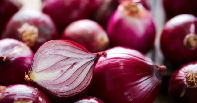 More people ill from Salmonella, ate onions from U.S. - Canada News