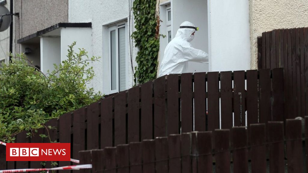 Newry: Woman found dead in Drumalane Park was from Poland