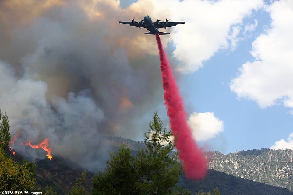 Helicopters, planes and more than 60 fire trucks are used by 527 firefighters.