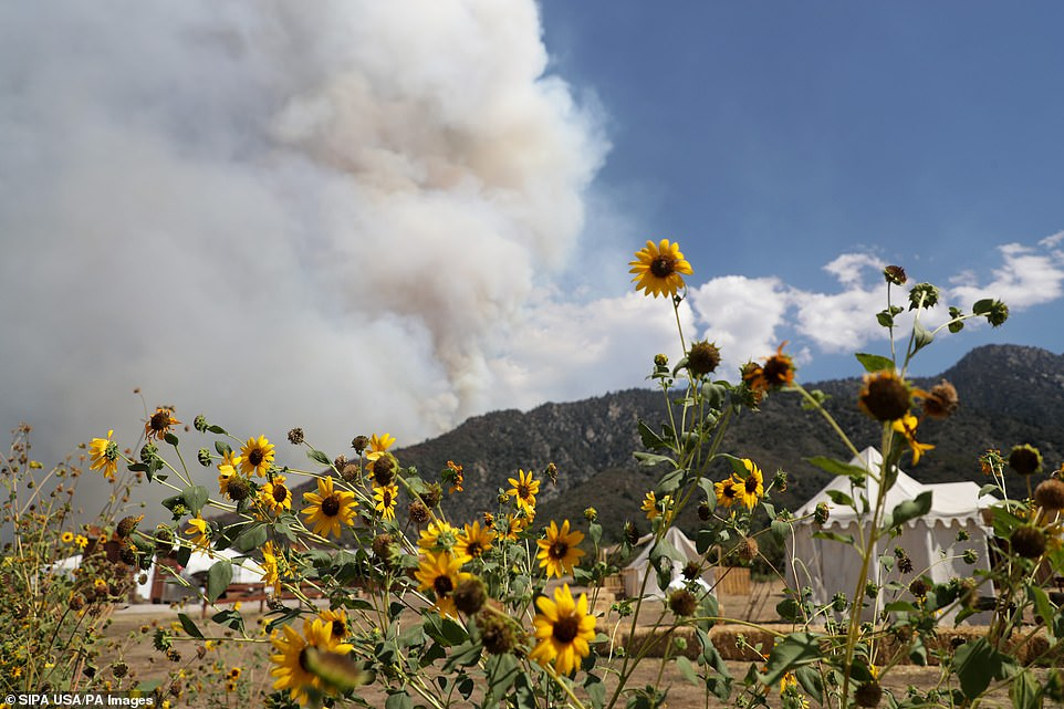 Fires spread rapidly north from the point where El Dorado Ranch Park began up the Yucaipa Ridge