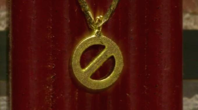 Big Brother Veto Medallion
