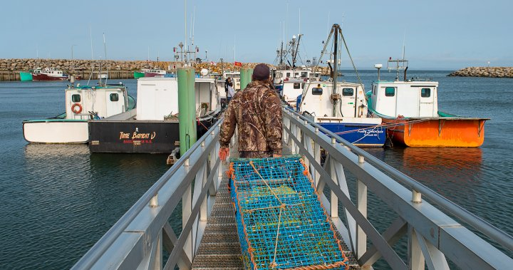 Micmac lobster fishing in Nova Scotia increases to 10 boats