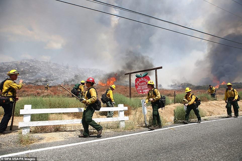 Gender Reveal Party launches El Dorado wildfire on Saturday morning, confirmed
