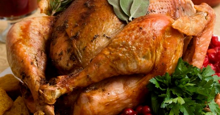 BC's top physician provides tips for a safe Thanksgiving
