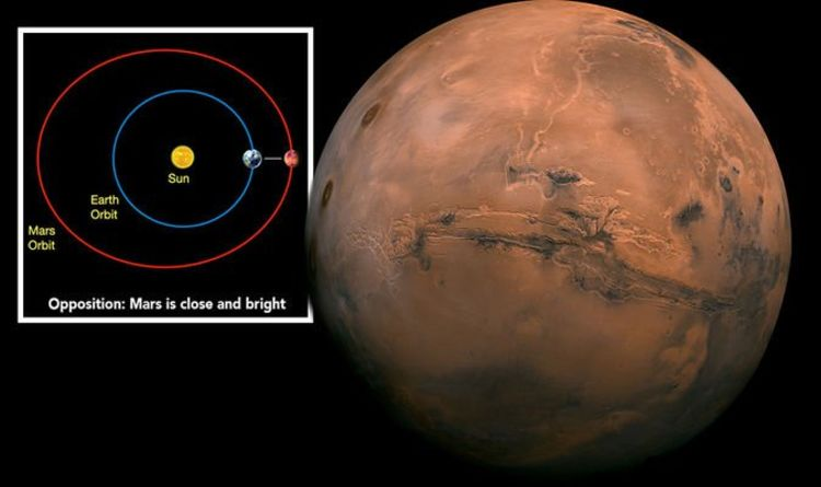 Mars Opposition 2020: How to see Mars against Earth next week?  |  Science |  News