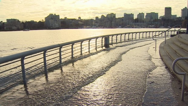 Strong winds, heavy rain on the way as the 'strong storm' reaches the south coast of BC