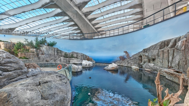 Dozens of animals died during the restoration of the Montreal biodome