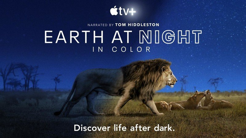 This 'Earth at Night in Color' trailer will make you roar even more