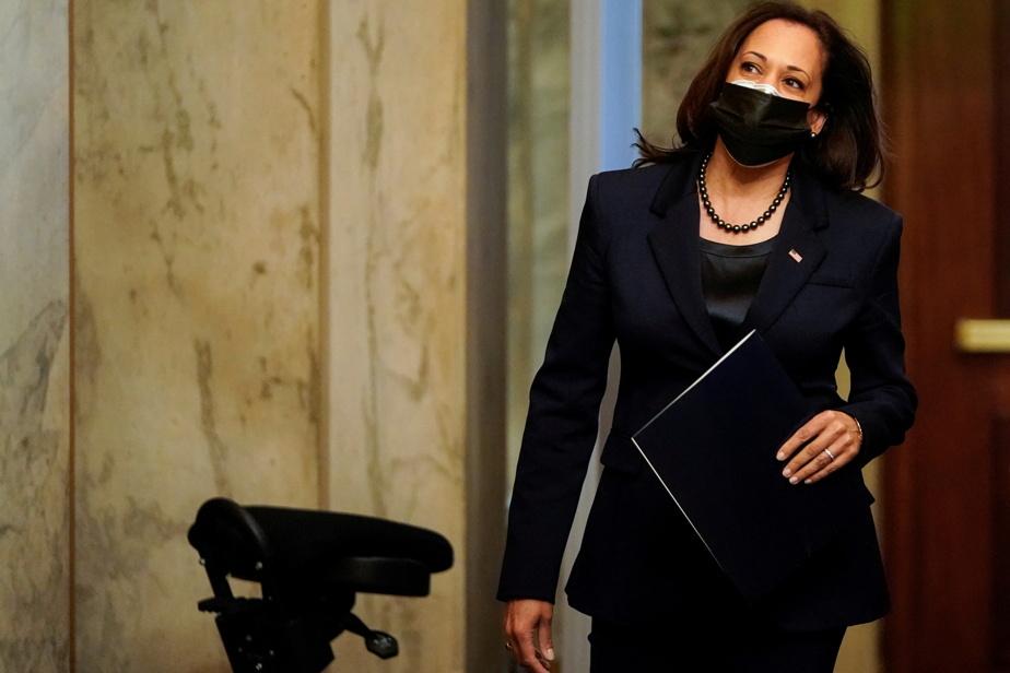 Senate |  Kamala Harris represents the issue of replacement diversity