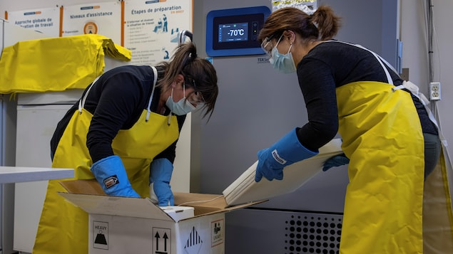 Des infirmières manipulent des caisses de vaccins.