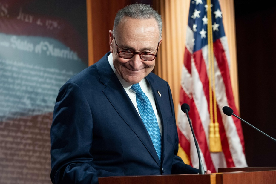 Democratic majority in the Senate    Baptism by fire for Chuck Schumer