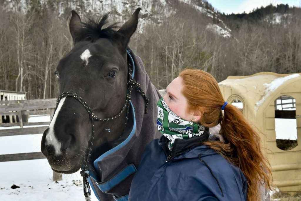Deadly virus hits Lusquille stables    News    Is good
