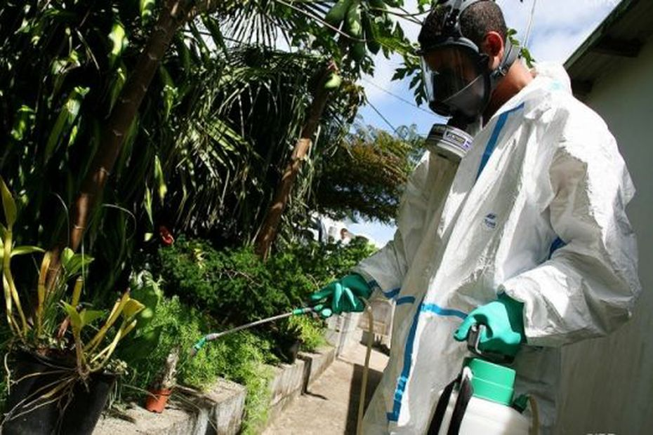 Dengue epidemic accelerates in Reunion with 758 cases a week -