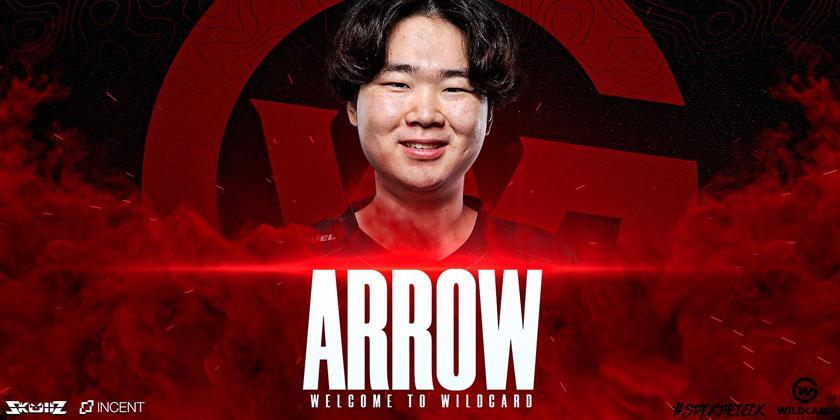 Mercato Lol: Rejoin the arrow wildcard gaming