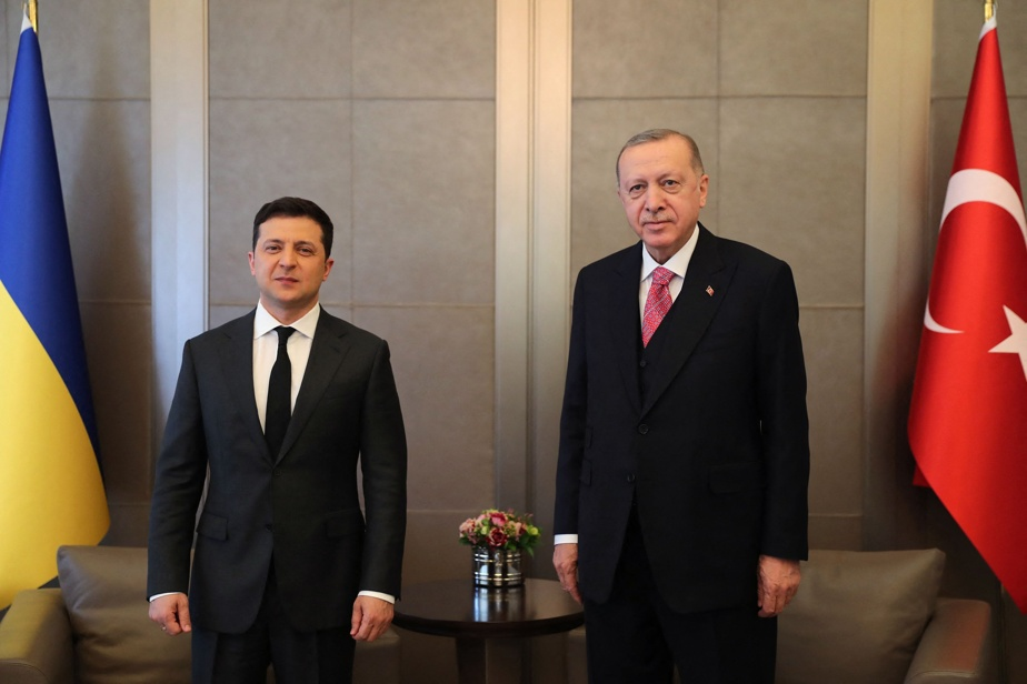 """Ukraine-Russia relations    Erdogan did not want an """"increase in tensions"""""""
