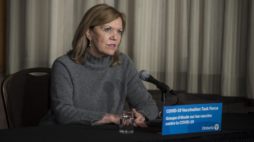Ontario Health Minister Christine Elliott at a press conference.
