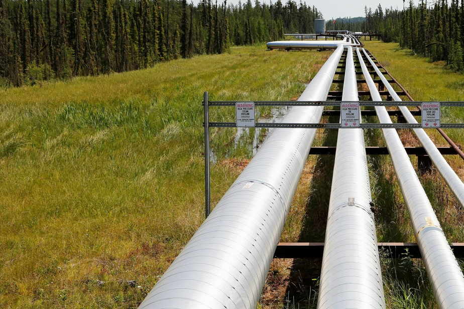 """Cultivated Gas Project    Complaint against Gajoduk for """"false or misleading information"""""""