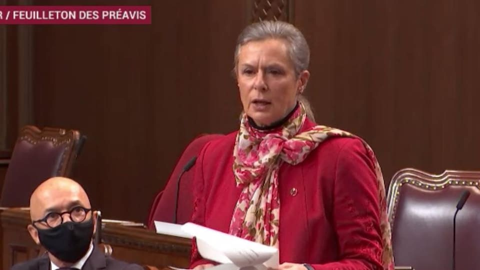 Senator Lucy Monsian stands in the Senate Chamber.
