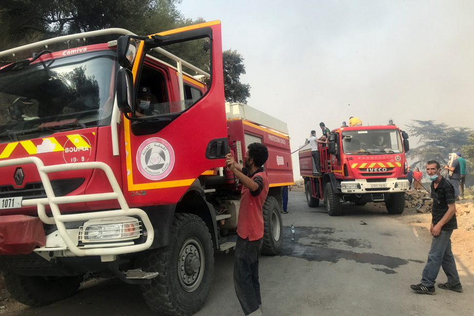 Wildfires in Algeria Firefighters continue their fight, toll is rising