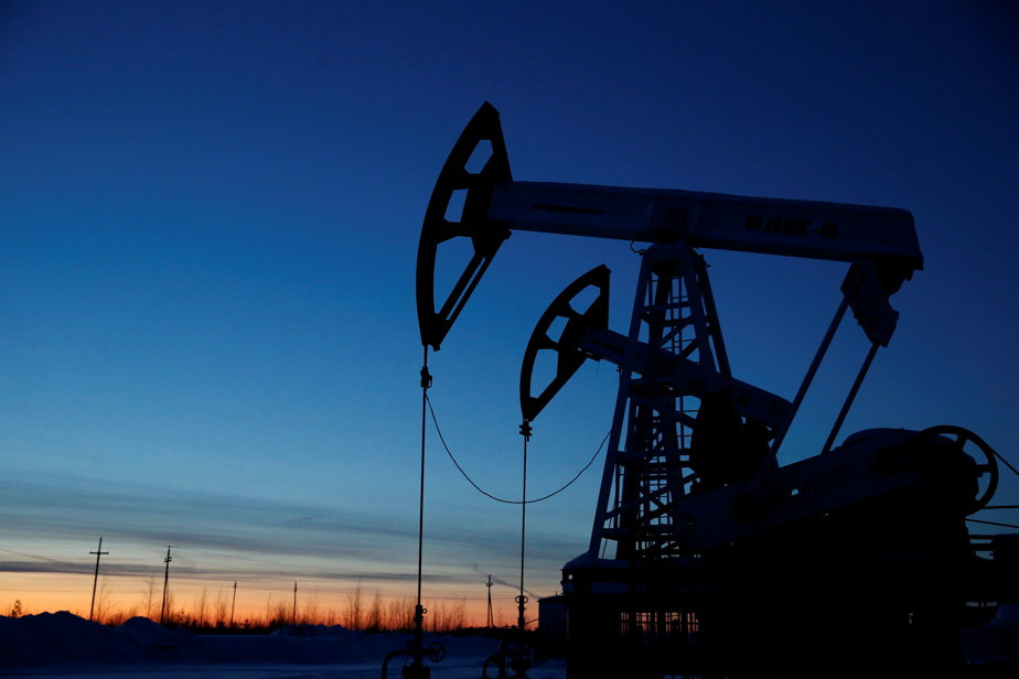 Oil drops between COVID-19 cases in US, China