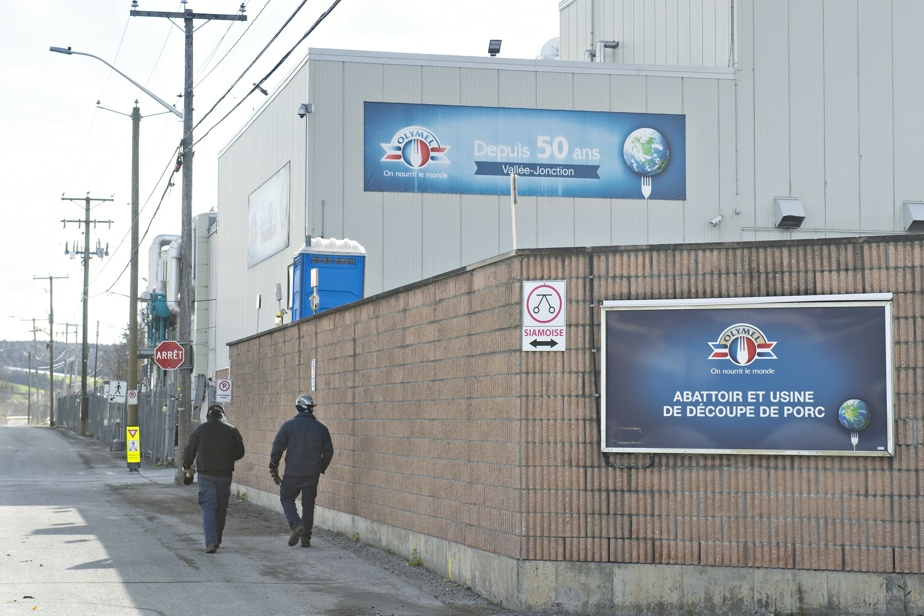 The strike continues at the Olimel plant in Wally-Junction