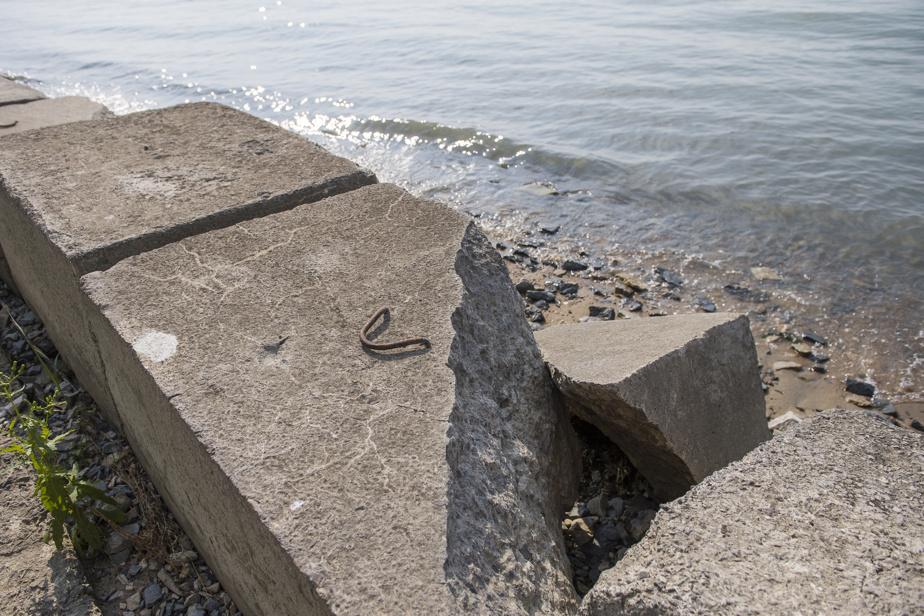 "Bank erosion in Verchères, Varennes and Contrecœur    ""It's not anyone's responsibility"""