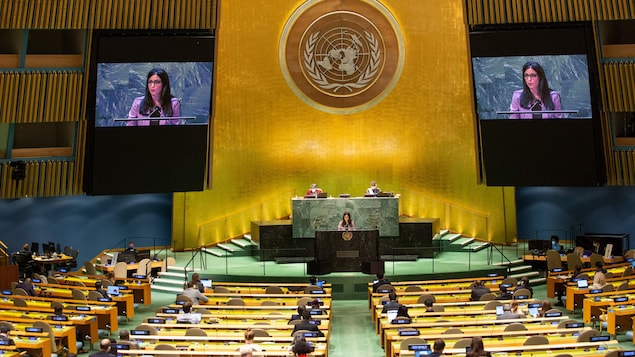 Myanmar and Afghanistan did not speak at the special UN General Assembly